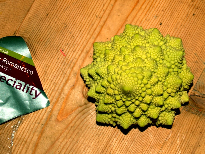 Romanesco Cauliflower fractal