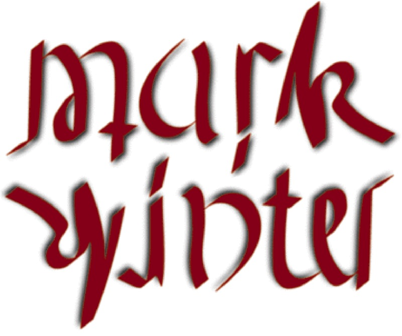 Ambigram by Punya Mishra: Mark Winter